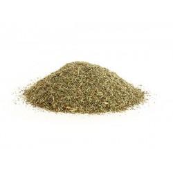 Dried Horsetail (Shavegrass)
